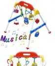 BABY'S MUSICAL PLAYGYM